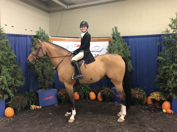 Chloe Watrous and Casual were sixth in the Children's Hunters at the Pennsylvania National Horse Show. Photo by Jodi Vazquez