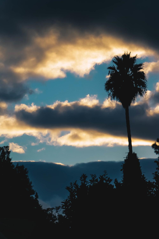 Sunset | 6 |.jpg