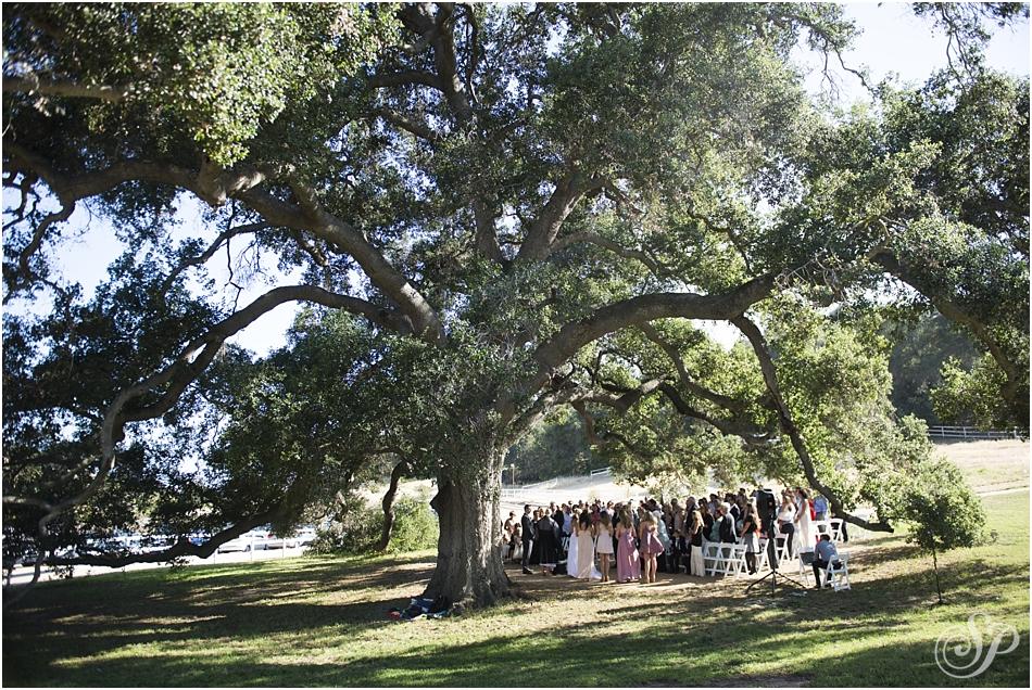 wedding_2159