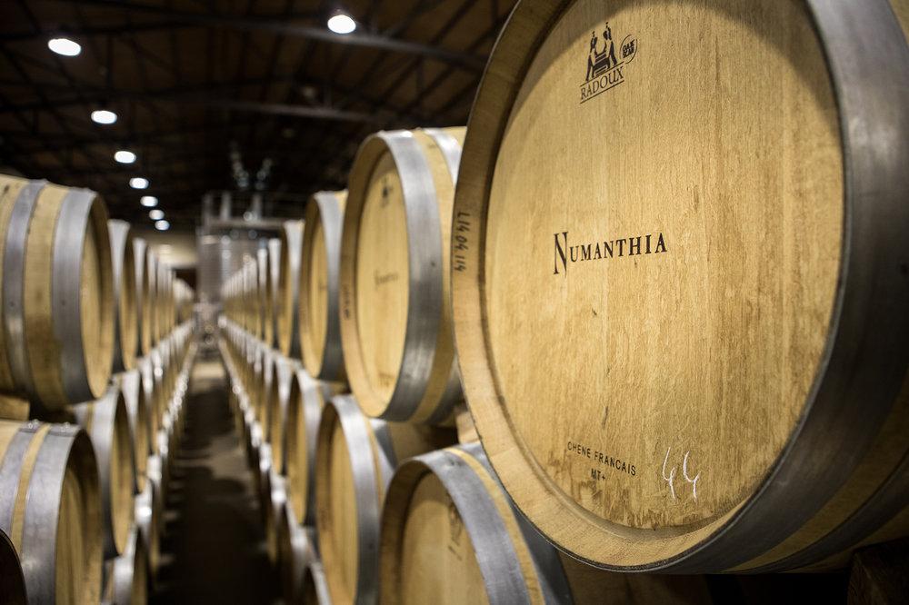 estates & wines ttt 2017 almaphotos-1076-4369_web.jpg