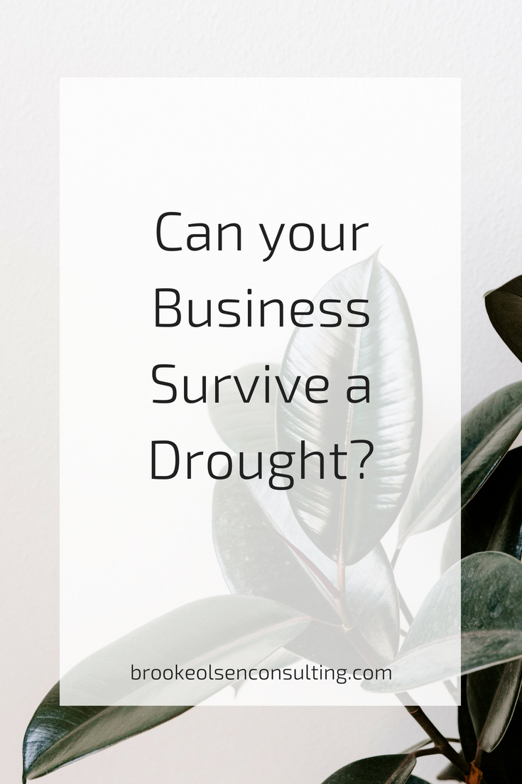 how to survive a drought in your business | Brooke Olsen Consulting
