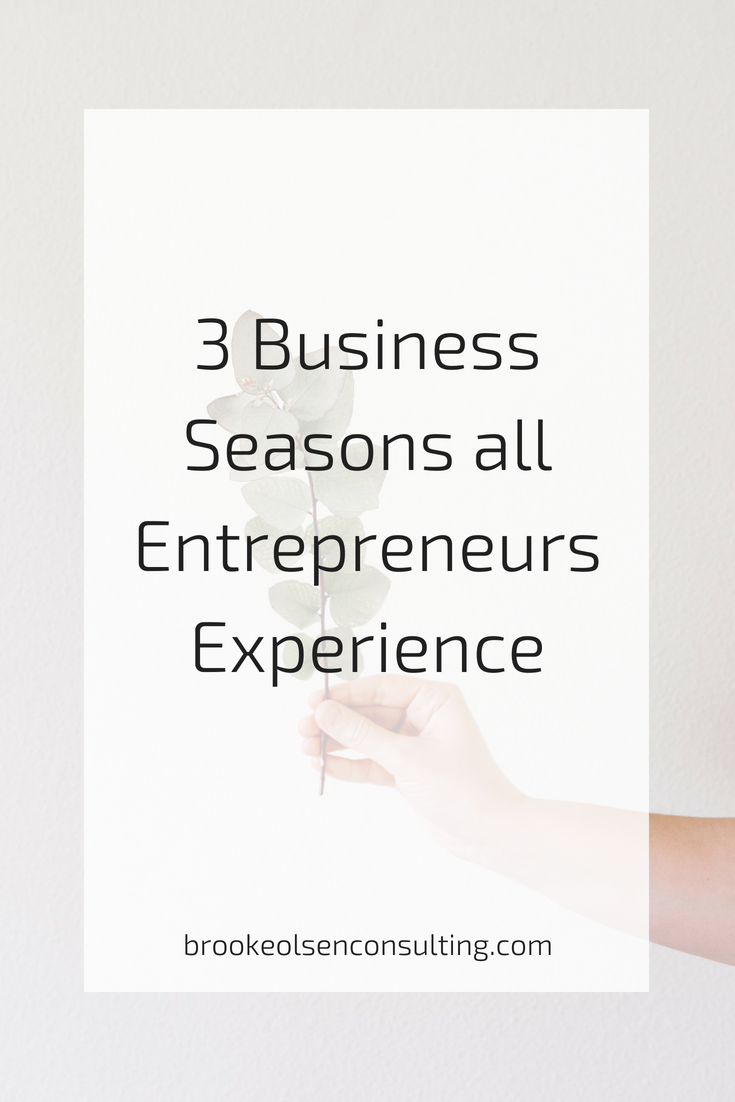 top 3 business seasons for entrepreneurs and business owners | Brooke Olsen Consulting