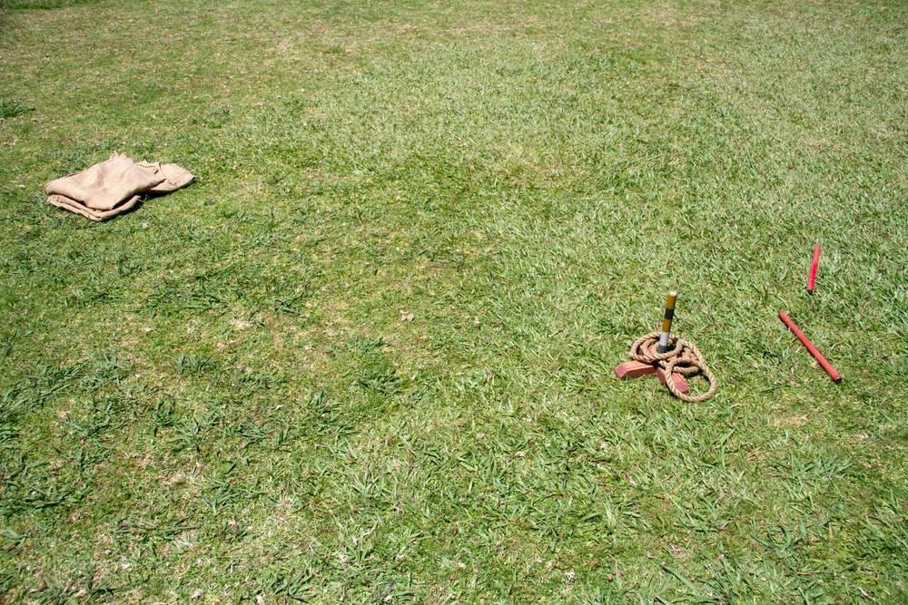 Waitangi Treaty Grounds (Sports) (diptych),2017, 2 of 2