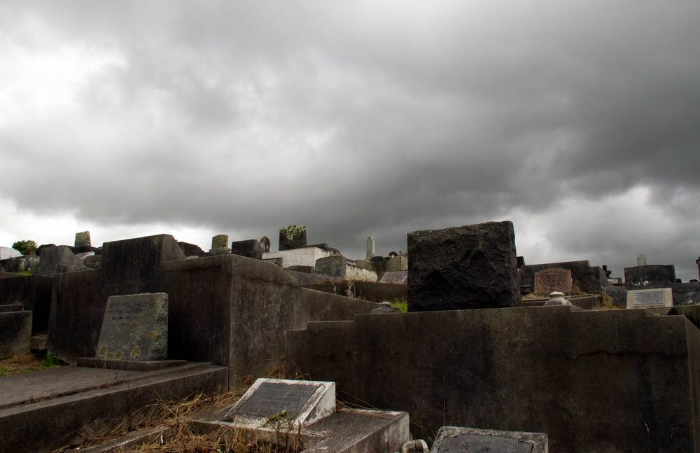 Paeroa Cemetery, March 2016*