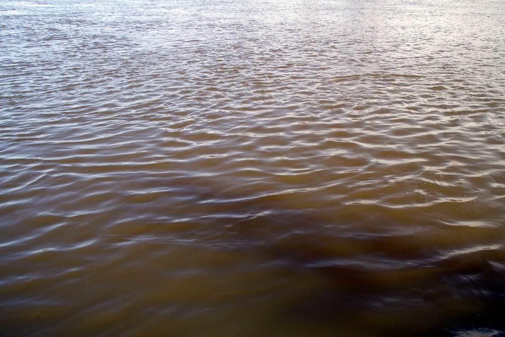 Waikato River, Huntly, July 2016*