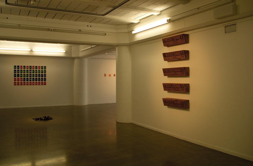 Te reo Pākehā, Installation View