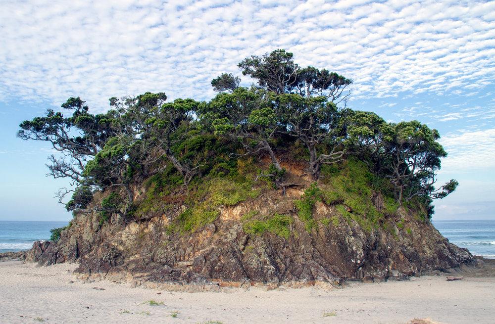 Memory Park, Medlands Beach, Aotea/Great Barrier Island, January 2019