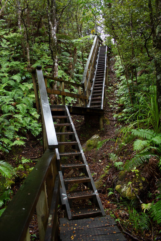 Climb, Aotea, March 2019