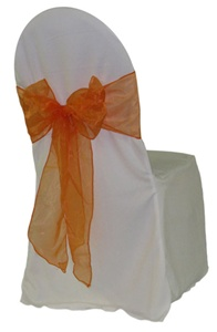 Orange Organza Sash.jpg