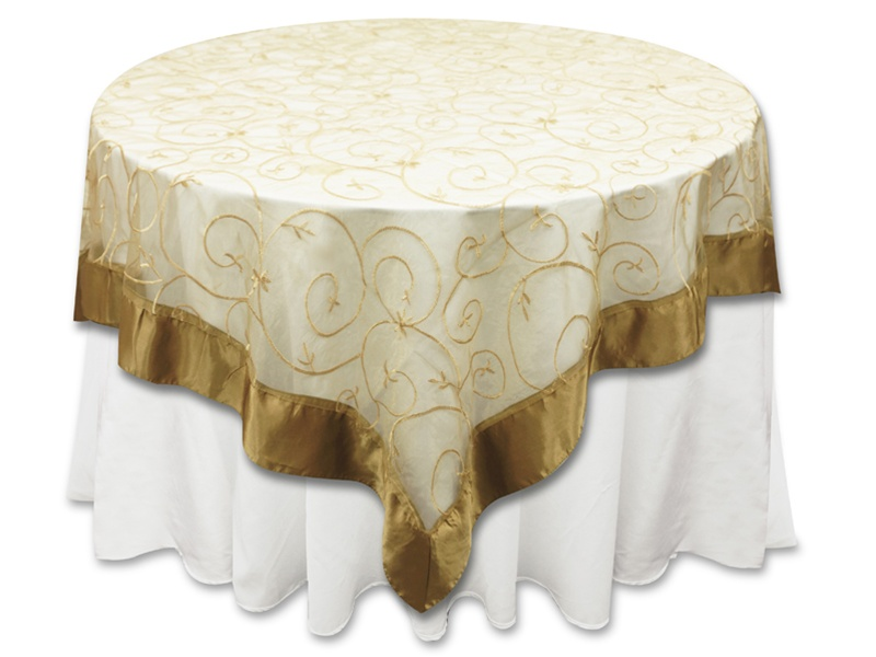 Champagne  Embroidered Overlay.jpg