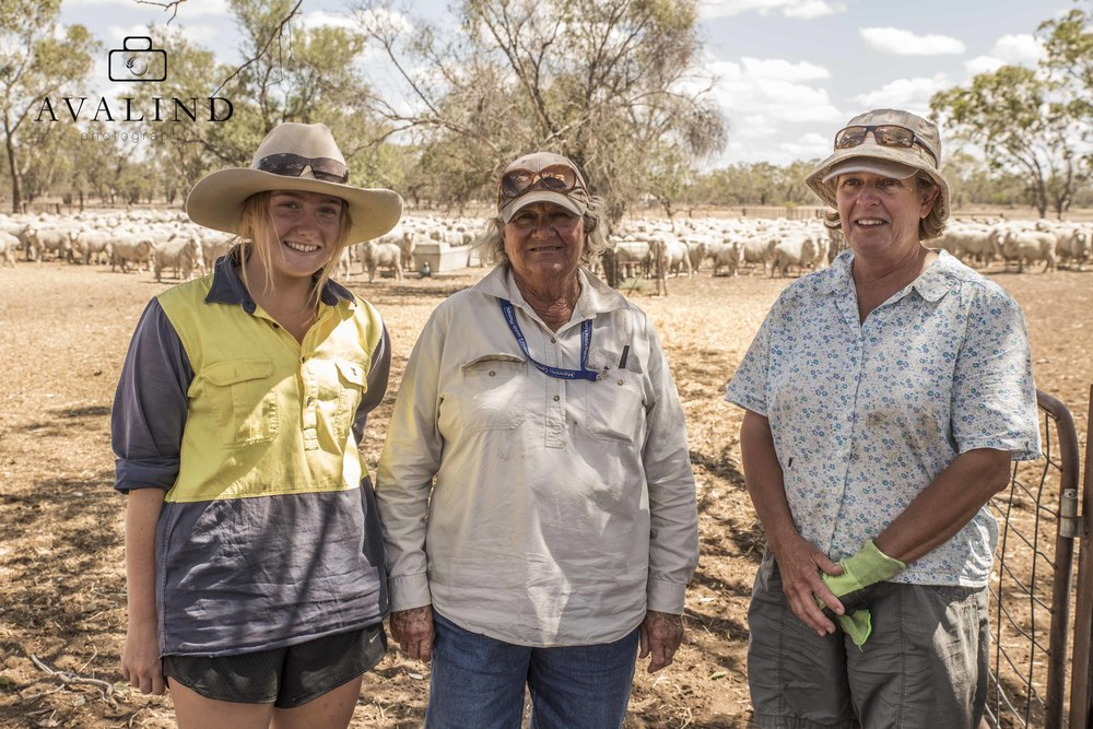 Lizzie, Helen & Therese. Back to work after feeding us up on tea and biscuits! Aussie Helpers were about to run a hay day the following week at this property.