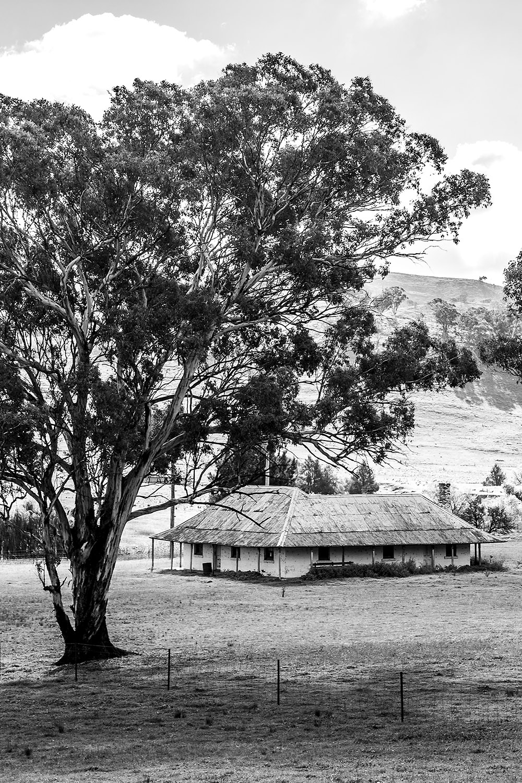 Crudine homestead black&white SS.jpg