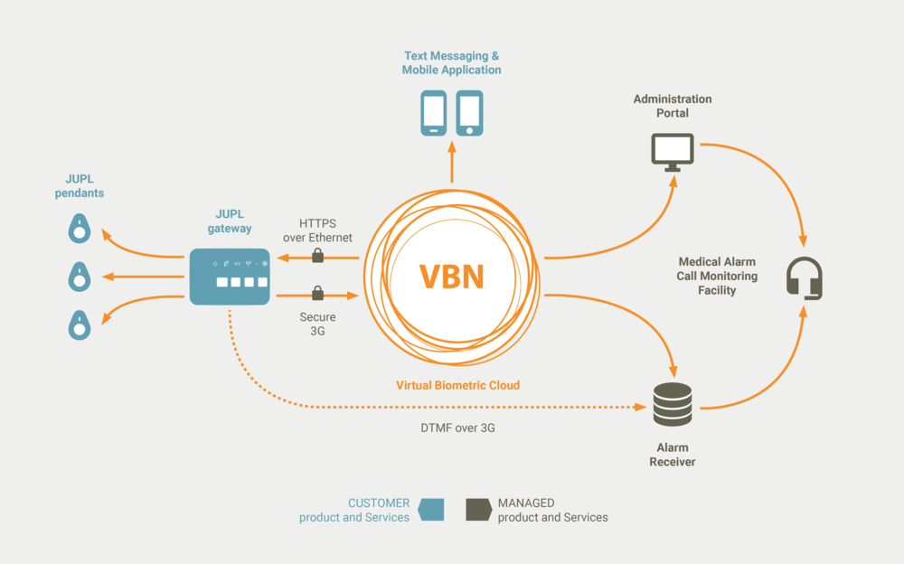 VBN Diagram.png