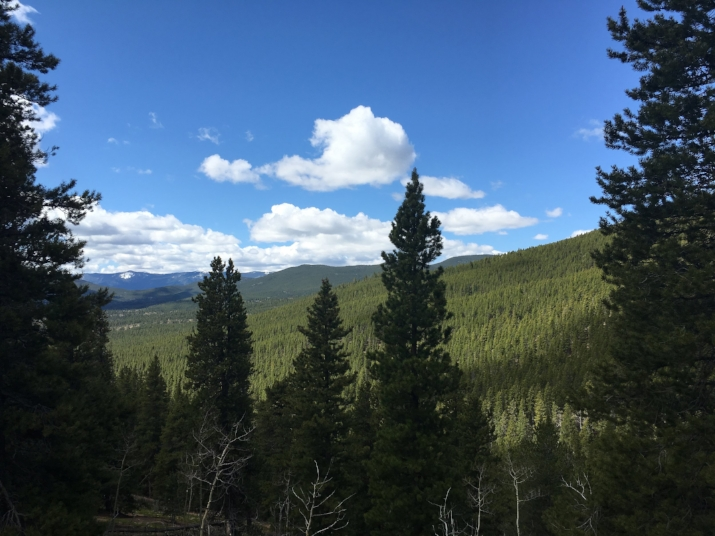 Pike National Forest, Colorado