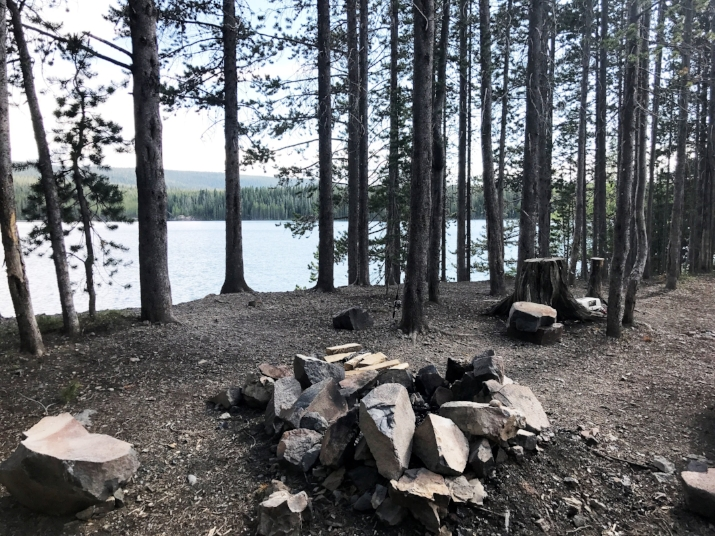 Our first campsite at Grassy Lake (outside of Grand Teton National Park)