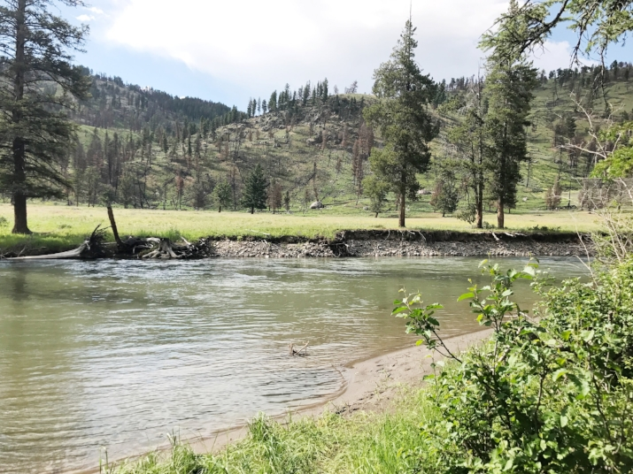 The creek just steps from out campsite in Yellowstone