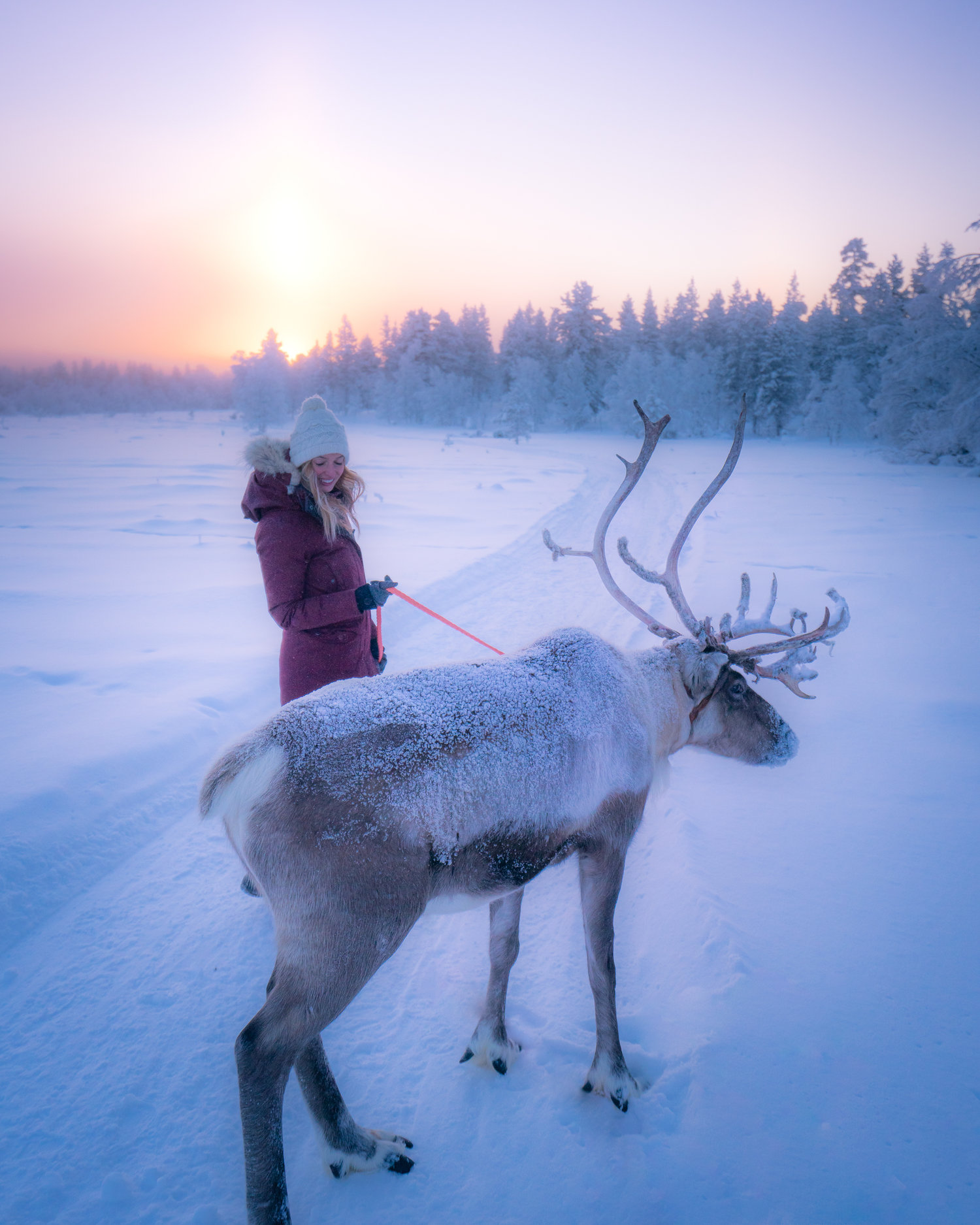 d3cd93165f5 Jess Wandering — Blog — Chasing Winter In Finland