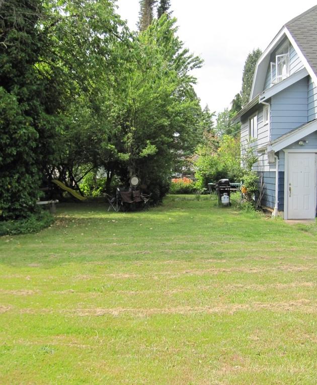 Empty yard before garden.