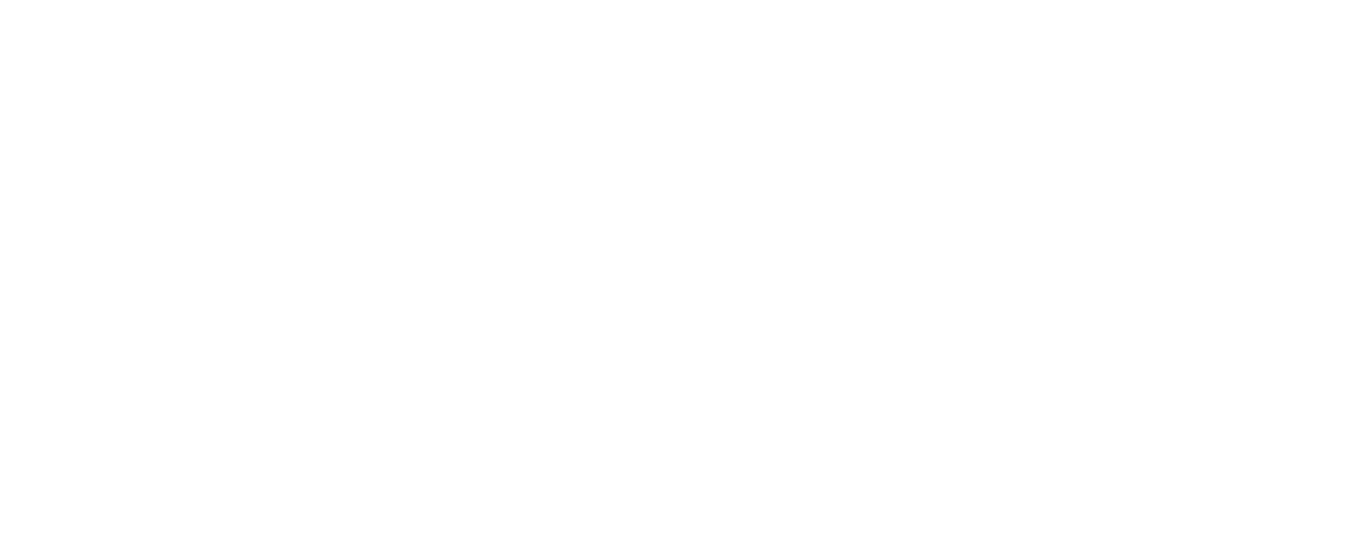 Complete Wheel Repair