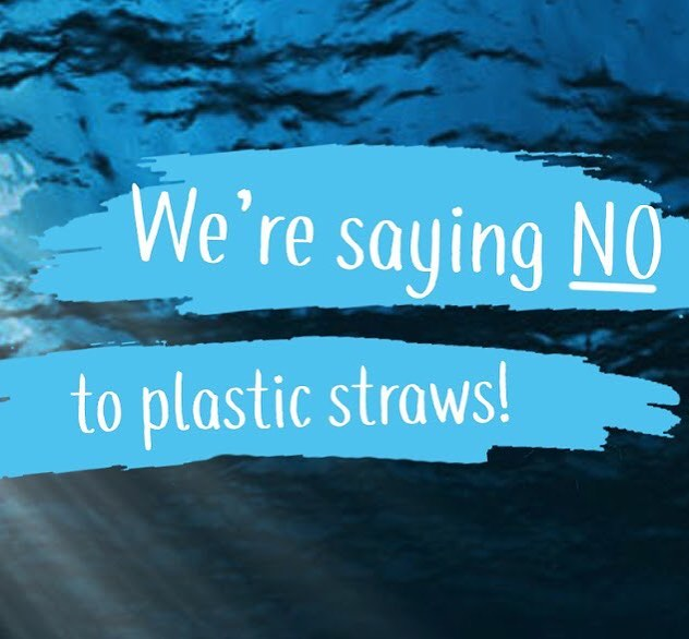 500,000,000 straws go into landfill and oceans every DAY. Unbelievable right? That's why we're ditching straws- double tap if you're with us! 💪💙💚🌏