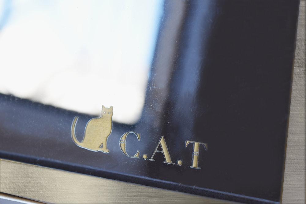 C.A.T_mirror.jpg