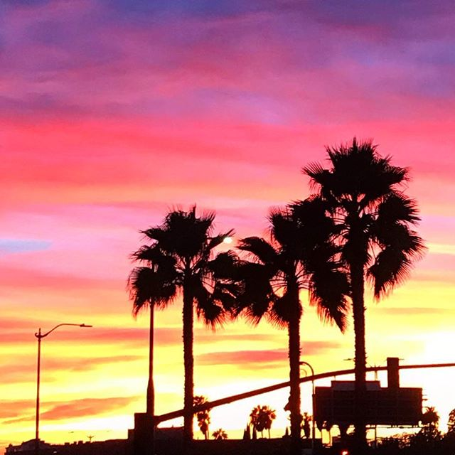 Endings can be beautiful too. 🌆🏝 . . #sunset #losangeles #palmtrees #fridaymood #fridayfeels #creatives #photography #silhouette #sky #lifeisbeautiful #graphicdesigner #lovedesign #coachella #colors #gradient
