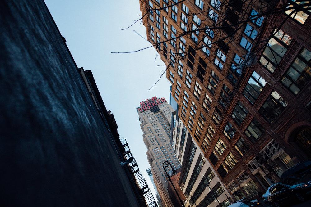 NY-IMG_3678-2.jpg