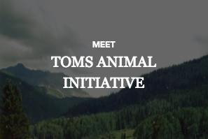 TOMS Animal Initiative