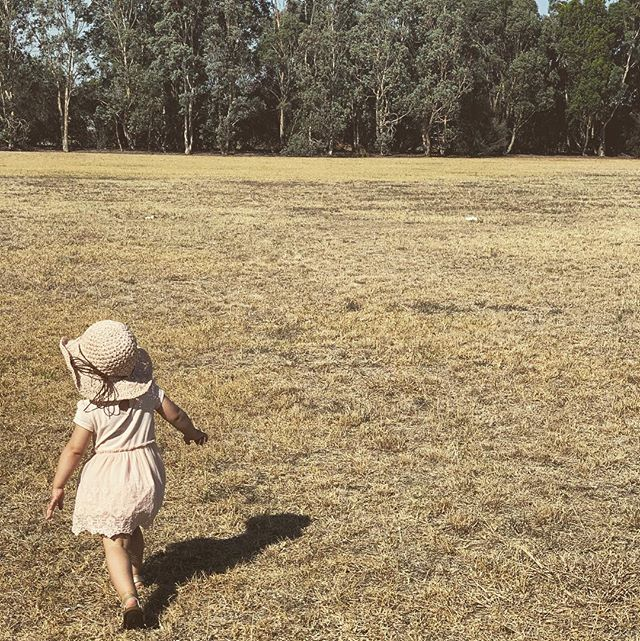 Last day of summer today and although it's been fun, we (and our bees) are certainly looking forward to greener, hydrated pastures 🐝 💦 🍯 🇦🇺 #beehydrated #honeywater #australia #brisbane #aussie #aussiekids #brisbanenkids #brisbanemums #melbournekids #melbournemums #brisbane #melbourne #savethebees #australian #australiandrink #healthdrink #healthfood #honeycomb #flowers #brisbaneflowers #melbourneflowers #sydneyflowers #adelaideflowers #byronbayflowers #melbournecafe  #melbourneweather