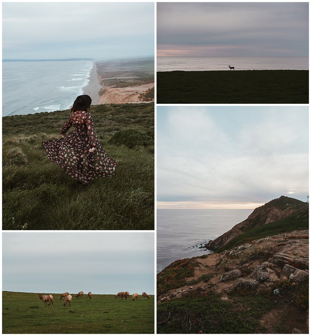 First night at Point Reyes National Seashore