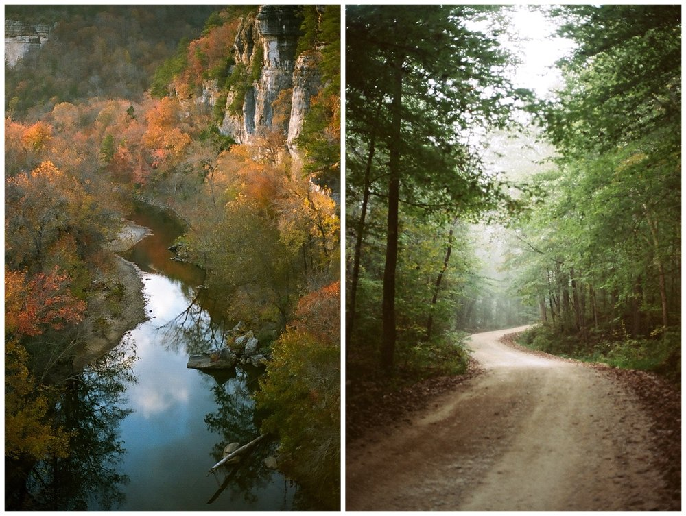 Examples of soft focus forgiven in a beautiful way. Both shot on Kodak Portra 160 - Canon AE-1 - 50mm 1.8