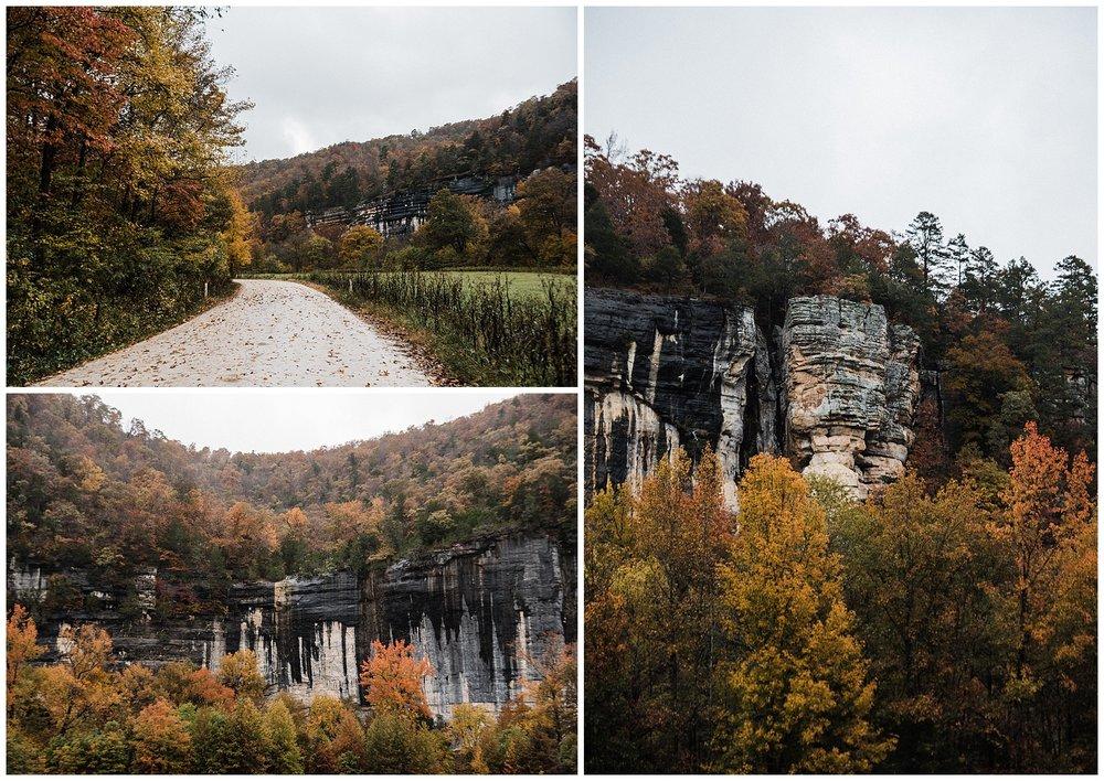 Steel Creek Fall Color 2018 Tanner Burge Photo