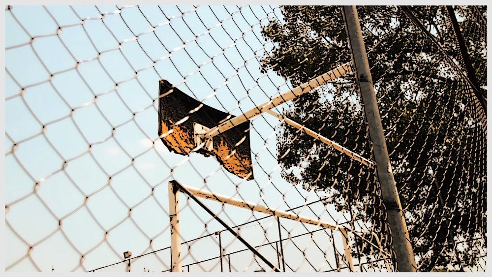 parque do gato0e00e0q0.jpg