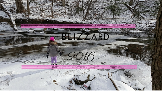 blizzard2016.jpg