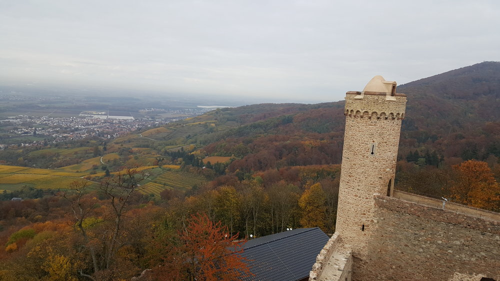 Now tell me this is not pretty impressive? View from one of the towers. Auerbach castle, Hesse.
