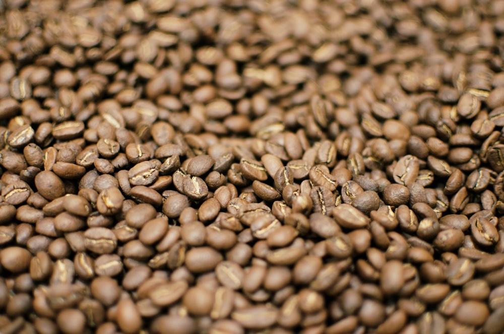 coffee beans 01.jpg