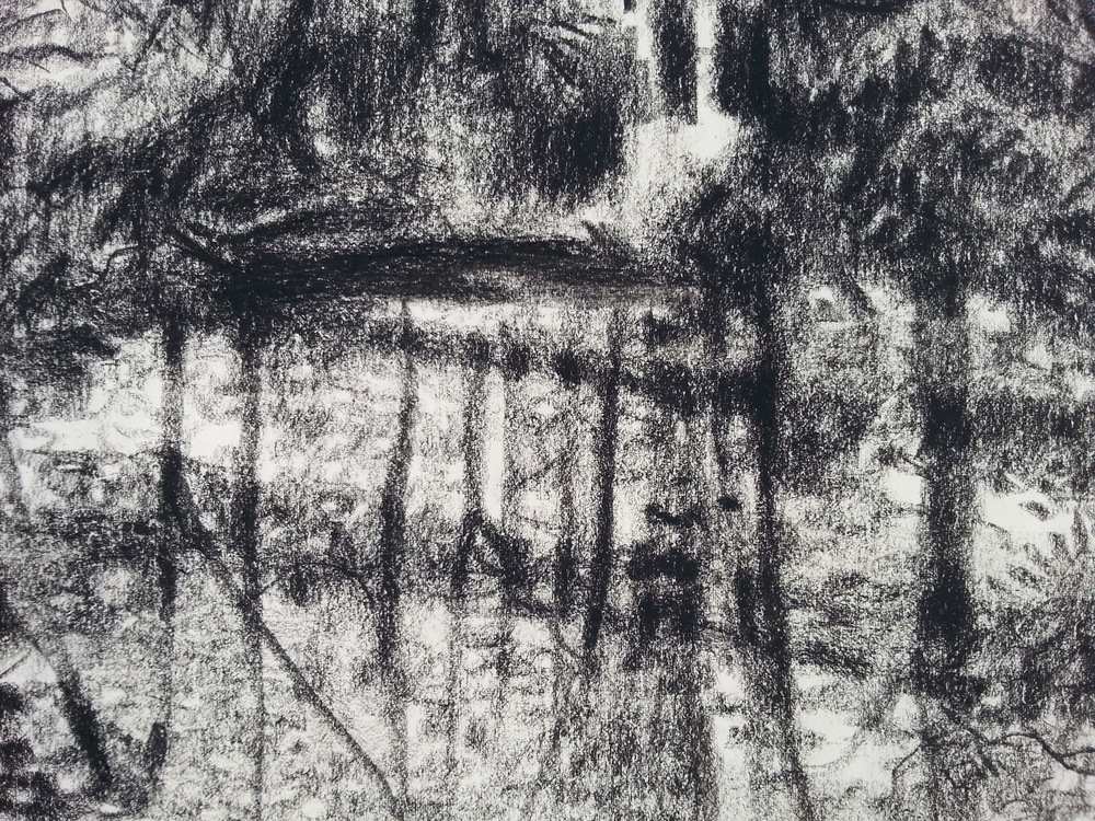 Merzbarn Pond / 2016 / pencil on paper