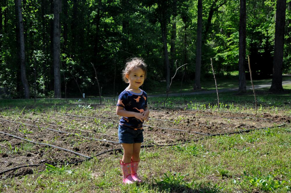 hazel by the garden patch.jpg