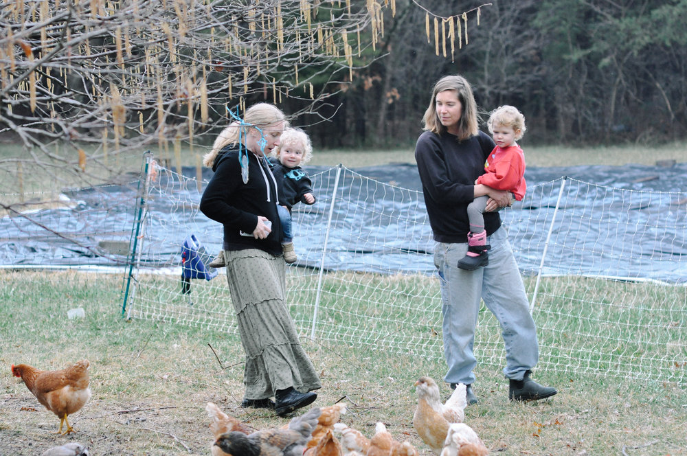 redtree farmstead chickens mamas and toddlers on hips.jpg
