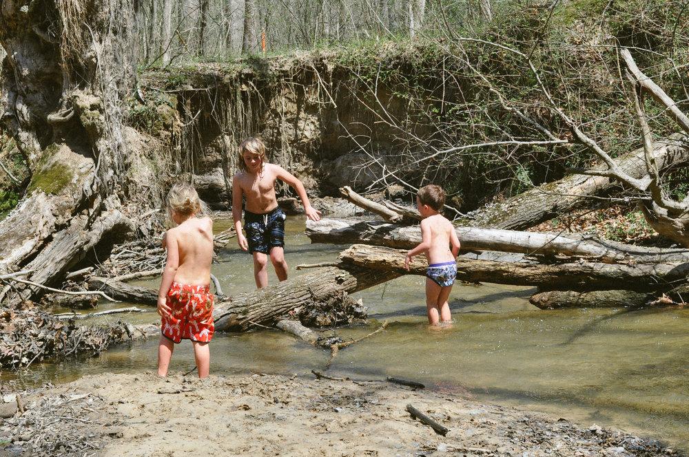 creek day.jpg
