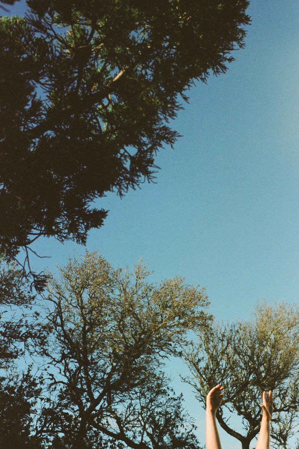 ocracoke-3.jpg
