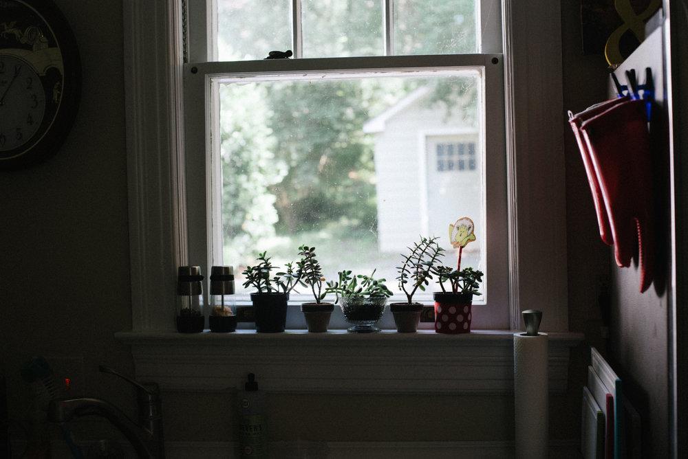 newborn session in garret park kitchen windows.jpg