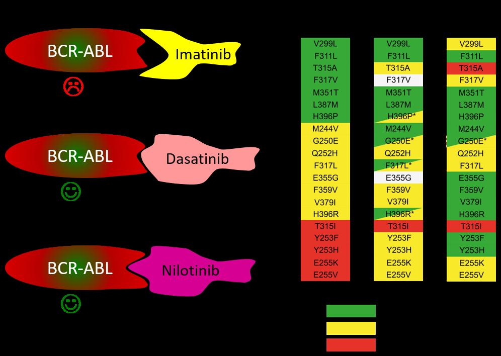 BCR-ABL mutáció révén előfordulhat, hogy a fehérje térszerkezete megváltozik, és az imatinib többé nem képes hozzá kötődni, és így kifejteni gátló hatását.