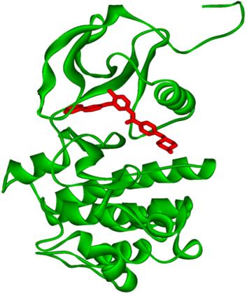 BCR-ABL1 fehérje térszerkezete, melybe a tirozin-kináz-gátlómolekula mintegy kulcsként illeszkedik.