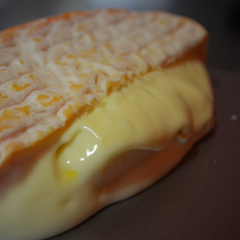 Washed Rind Cheese -