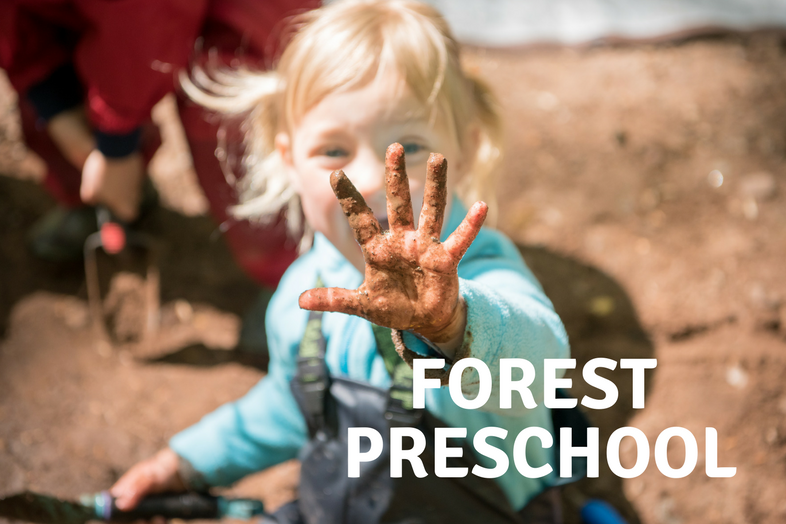 FOREST PRESCHOOL for children ages 3  - 6