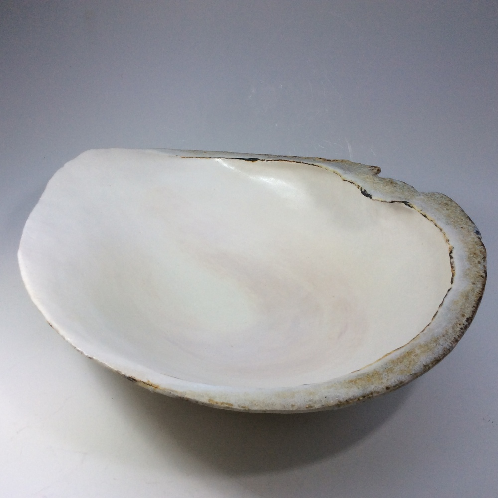 Pale Shell Form