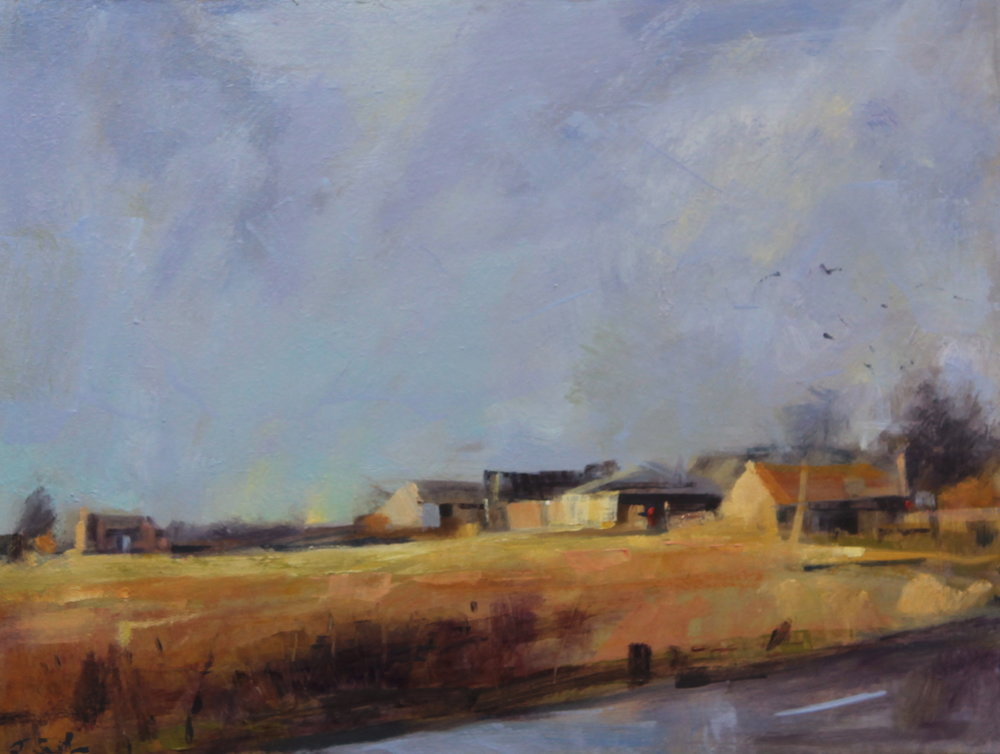 Cooksbridge farm, crows