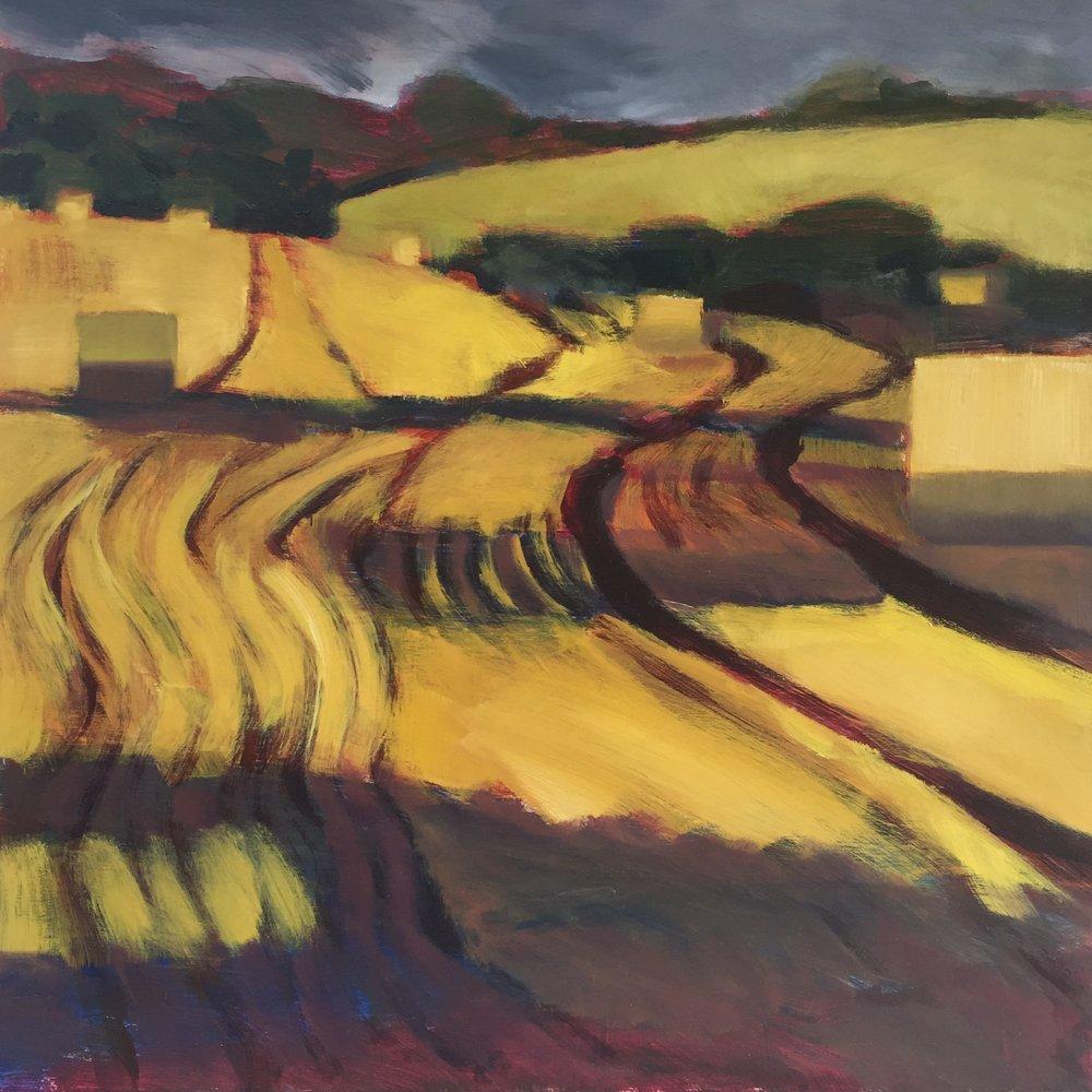 Evening Light at Binley