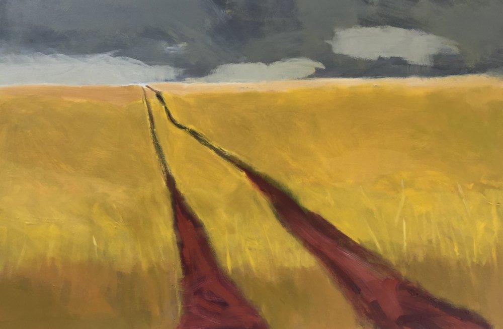 Skylarks over Hay Lane